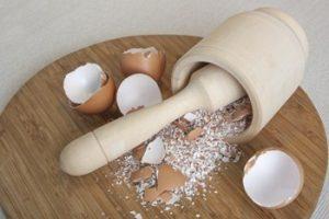рецепты с яичной скорлупой